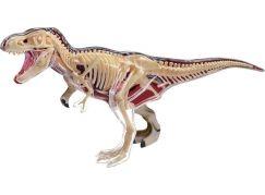 4D Anatomický model - T-Rex