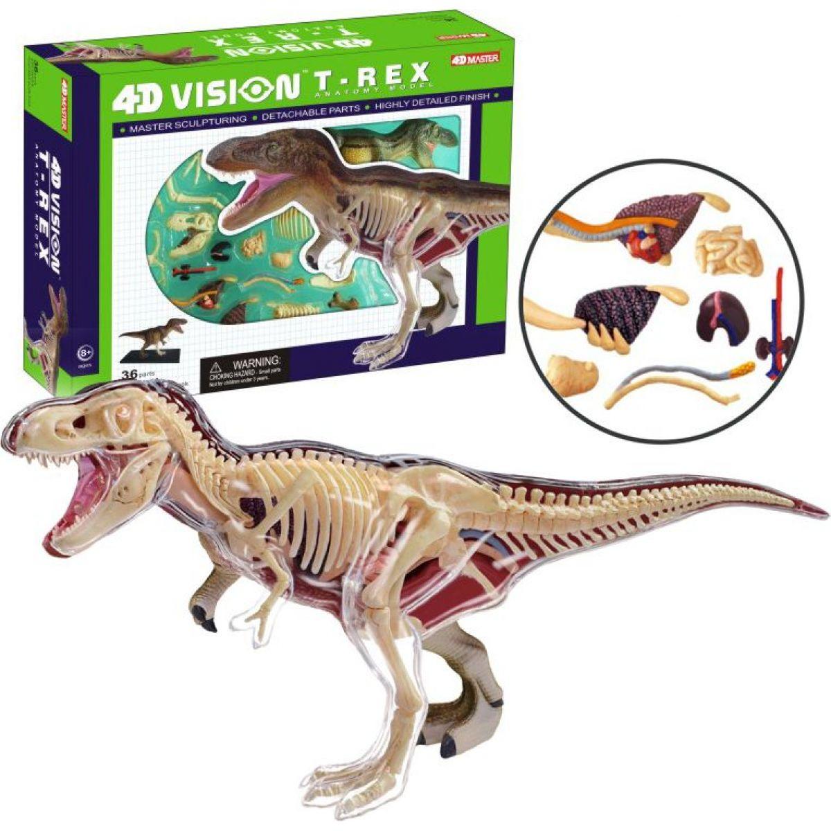 4D Anatomický model - T-Rex #2