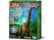 4M Brachiosaurus skládací kostra