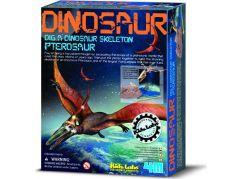 4M Pterosaurus skládací kostra