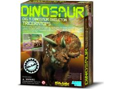 4M Triceratops skládací kostra