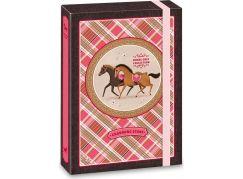 Ars Una Box na sešity Charming Stars koně A4
