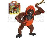 Bloco - Orangutan