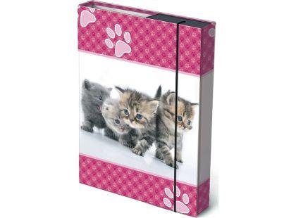 Bonaparte Box na sešity A4 Koťátka