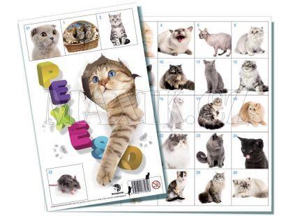 Bonaparte Pexeso 32 Kočky