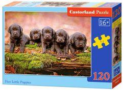 Castorland Puzzle 120 dílků Pět šťěňat labradora