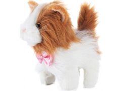 Chodící kočička Ginger zrzavá