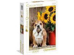 Clementoni Puzzle Buldog 1000 d