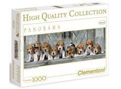 Clementoni Puzzle Panorama Bíglové 1000d