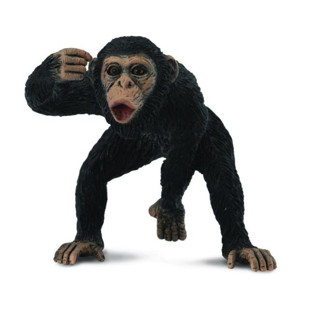 Collecta Šimpanz