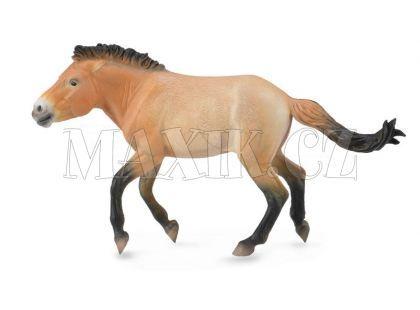 Collecta Kůň Převalského