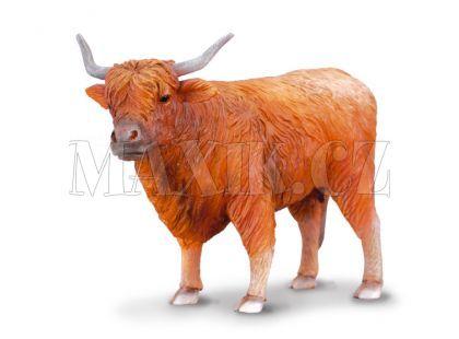 Collecta Skotská náhorní kráva 12cm