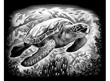 Creatoys Reeves Škrábací obrázek stříbrný 20x25cm - Želva