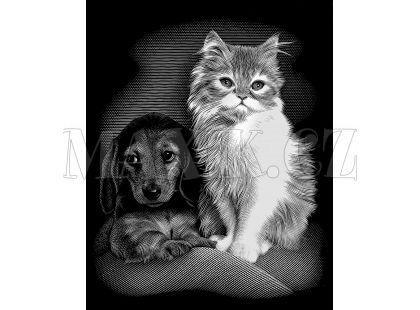 Creatoys Reeves Škrábací obrázek stříbrný 20x25cm - Kočka a pes