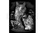 Creatoys Reeves Škrábací obrázek stříbrný 20x25cm - Kočky