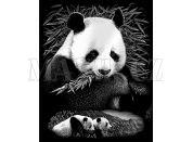Creatoys Reeves Škrábací obrázek stříbrný 20x25cm - Pandy