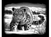 Creatoys Reeves Škrábací obrázek stříbrný 20x25cm - Sněžný leopard