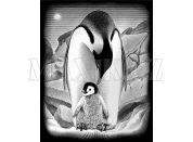 Creatoys Reeves Škrábací obrázek stříbrný 20x25cm - Tučňáci