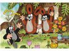 Dino Kostky dřevěné kubus Krtek a přátelé 6ks 3