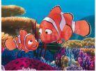 Dino Kubus 12 kostek Nemo 3