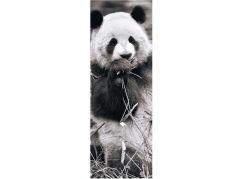 Dino panda v trávě 1000 panoramic puzzle