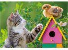 Dino Puzzle Koťátko a kamarádi 2x48dílků 3