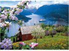 Dino Puzzle Norský fjord 1000dílků 2
