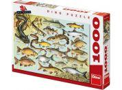 Dino Puzzle Ryby 1000dílků