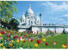 Dino Puzzle Sacre Coeur 1000dílků 2