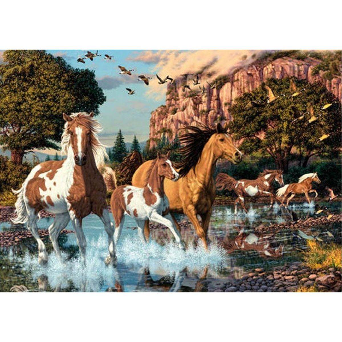 Dino Puzzle Secret Collection Koně 1000dílků #2