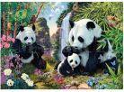 Dino Puzzle Secret Collection Pandy 1000dílků 2