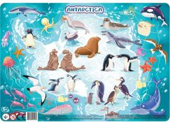 DoDo Puzzle Zvířata Antarktida 53 dílků