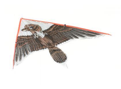 Drak létací orel hnědý