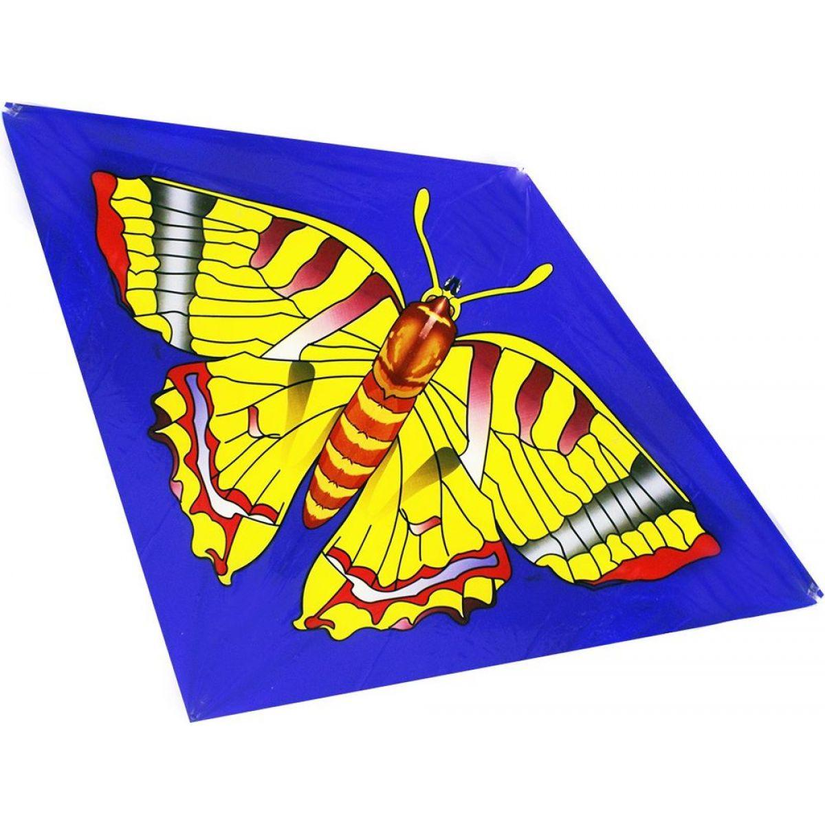 Drak létající 2 druhy - Motýl