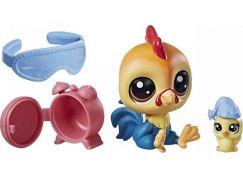 Hasbro Littlest Pet Shop Maminka s miminkem a doplňky Rick Chickencluck 1-126