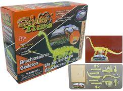 HM Studio Kostra brachiosaurus
