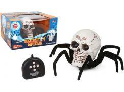 HM Studio RC Kostra pavouka