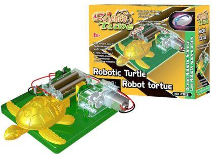 Hm Studio Robotická želva