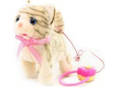 Kočka na kabel zrzavá