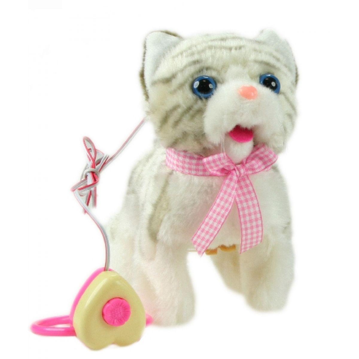 Kočka na kabel