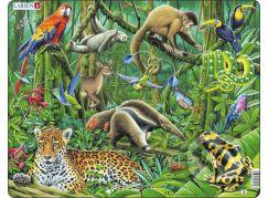 Larsen Puzzle Deštný prales Jižní Ameriky