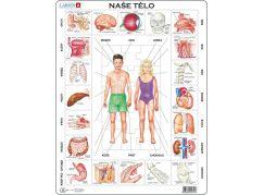 Larsen Puzzle Naše tělo - orgány