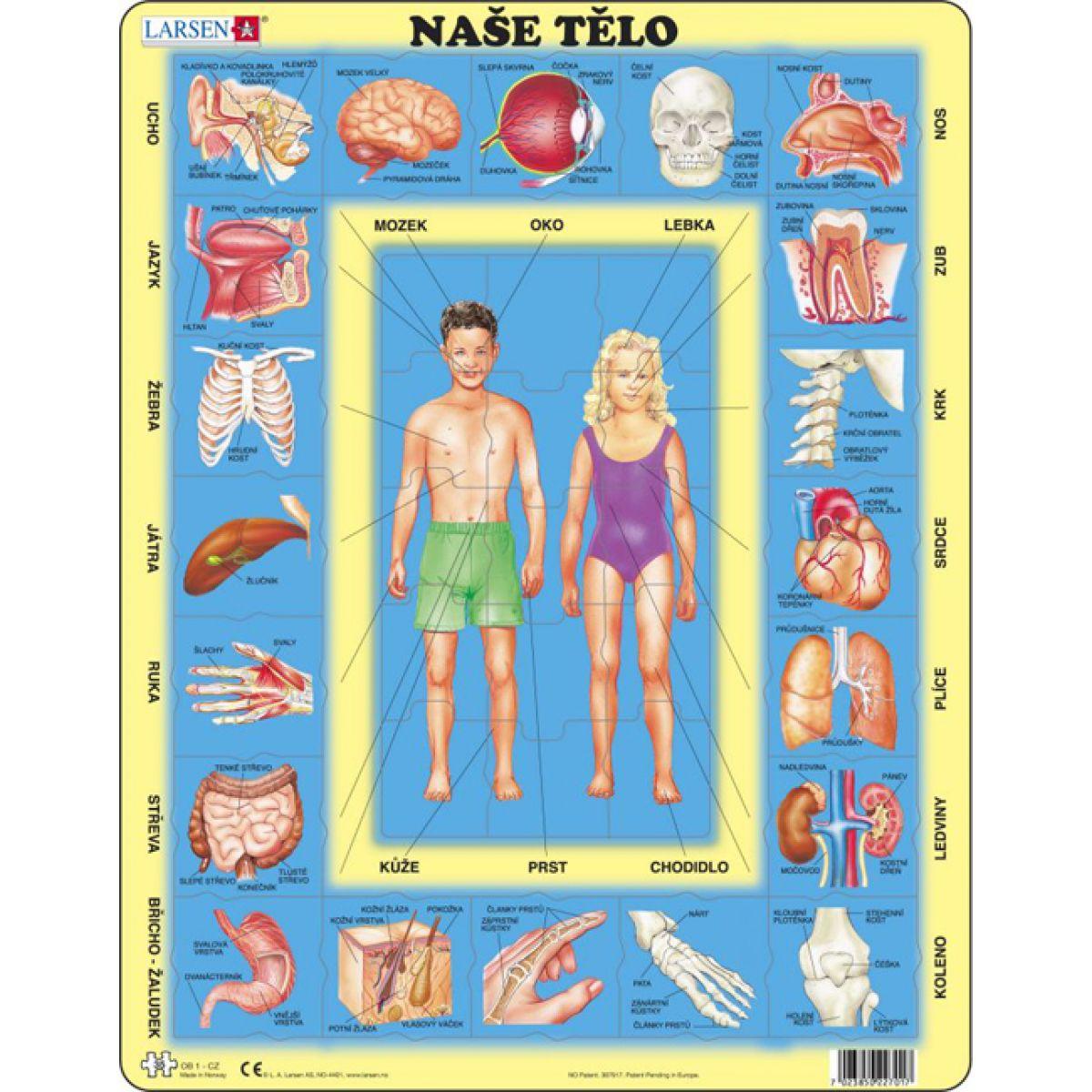 Larsen Puzzle Naše tělo