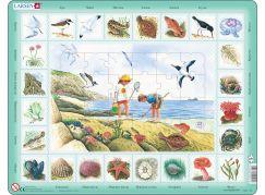 Larsen Puzzle Život u moře