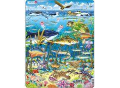 Larsen Puzzle Zvířata v moři
