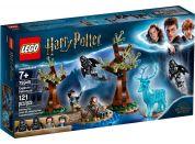 LEGO Harry Potter TM 75945 Expecto patronum