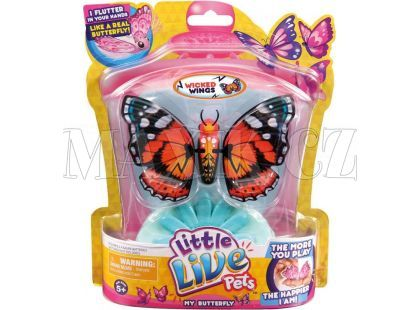 Little Live Pets Motýl - Krásná křídla