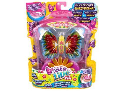 Little Live Pets Motýl - Tropická kráska