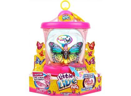 Little Live Pets Motýlí dům - Duhový motýlek