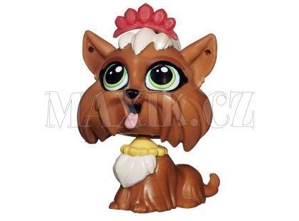 Littlest Pet Shop jednotlivá zvířátka - Terri Bowman